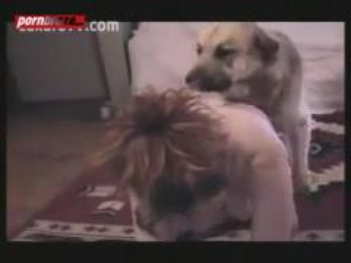 Dog threesome Dirty couple
