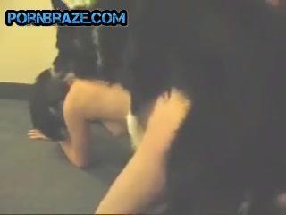 Porn dog free Animal Sex